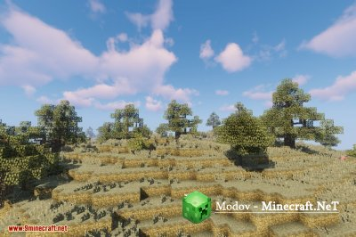Dynamic Trees Biomes O' Plenty Compat Мод 1.12.2