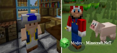 New Super MarioCraft - Текстур-пак PE 1.2.20.1 - 1.2