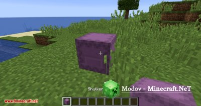 Curious Shulker Boxes Мод 1.13.2 (Шукер Рюкзак)